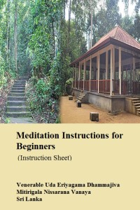 VenUD_Eng_MedInstructionsForBeginners_Cover