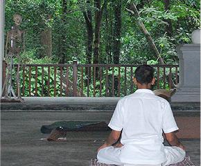 nissaranawanaya_meditator